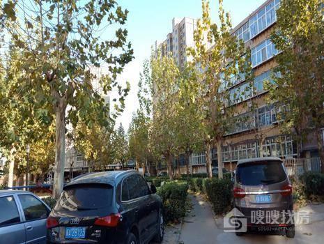 急售,西三庄万达商圈,北苑旁,外贸化工三室,单位宿舍实际大